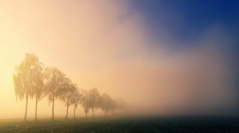 Veel automobilisten voeren verkeerde verlichting bij mist