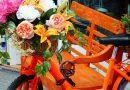 Oprit-/tuin markt in Schoonvelde op Koningsdag