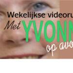 Yvonne Bijl- Hooijer: In de kelder is het donker
