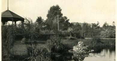 Petitie: Terugkeer van oude elementen Park Dwingeland