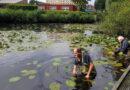 Visstekken bij Weidesteyn opgeschoond door vrijwilligers